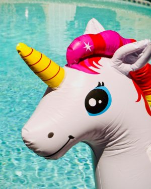 unicorn inflatable toy